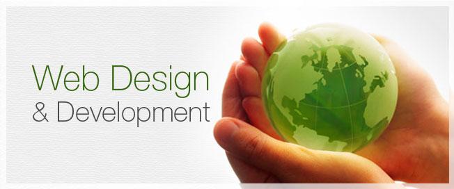 Web Design / Development